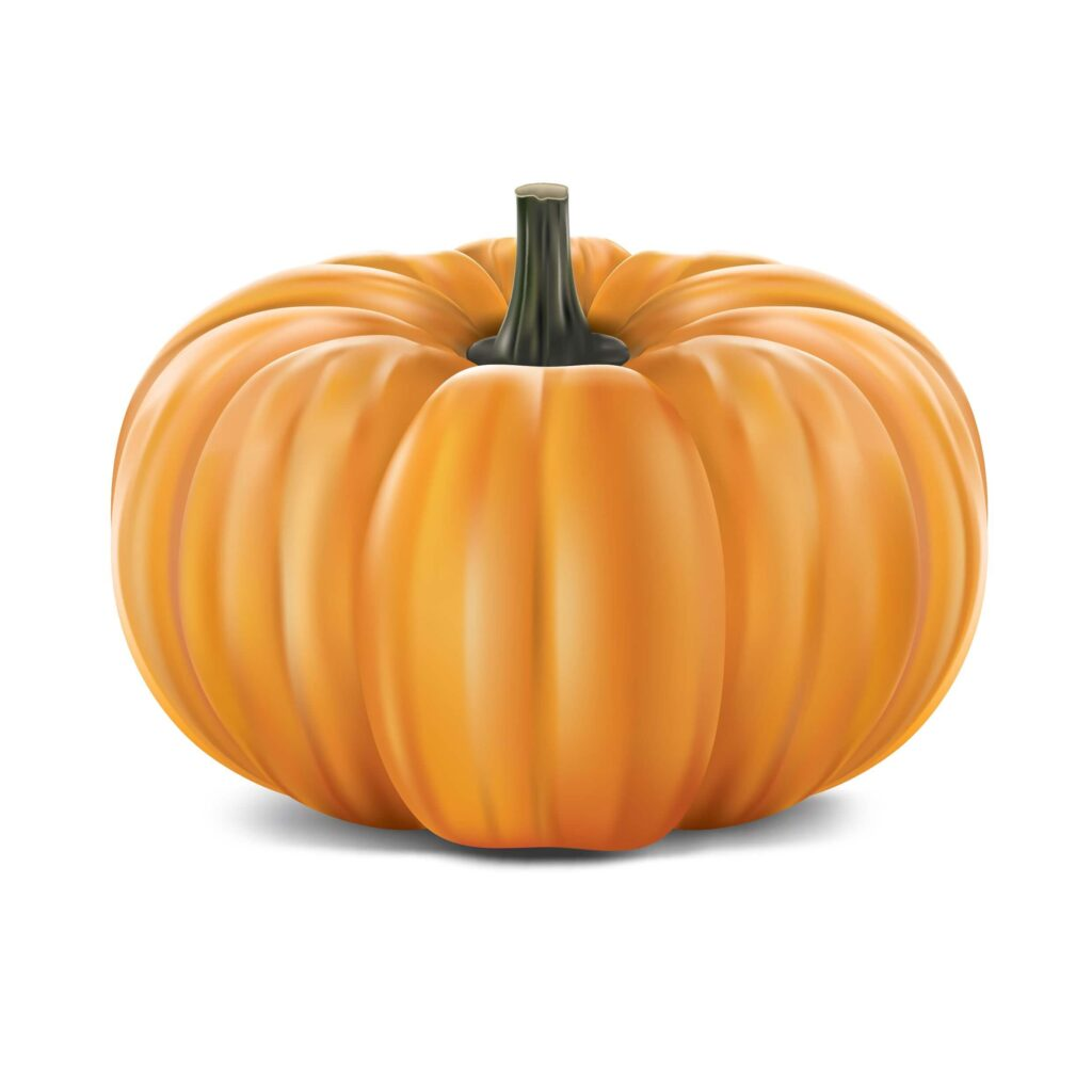 How To Plant Pumpkin