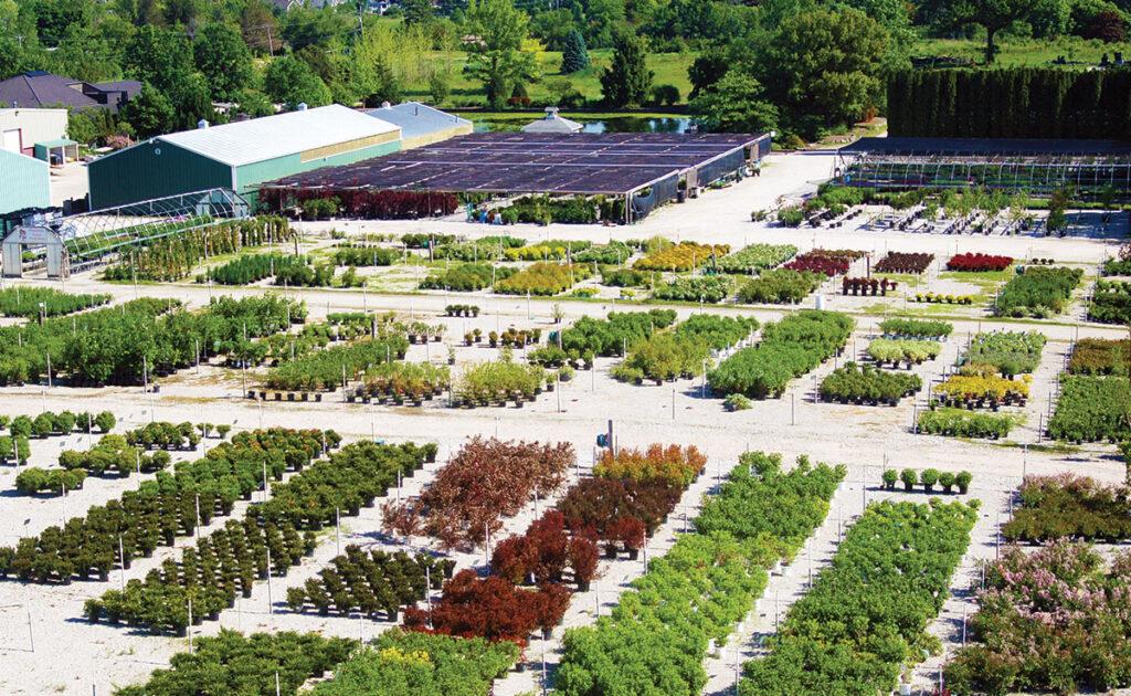 Plant nursery near me