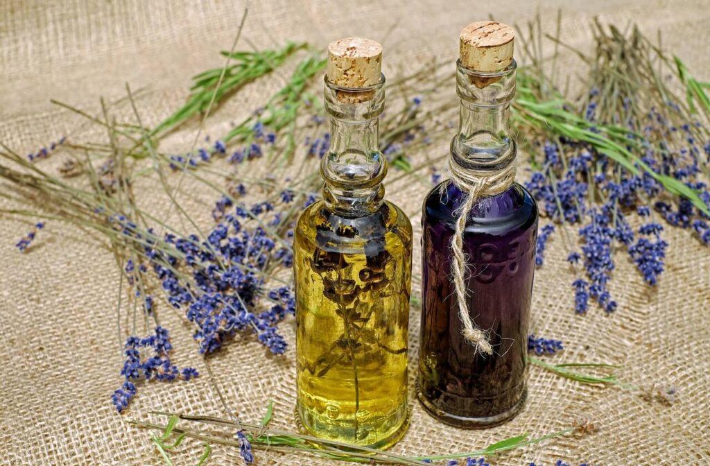 dry lavender flower