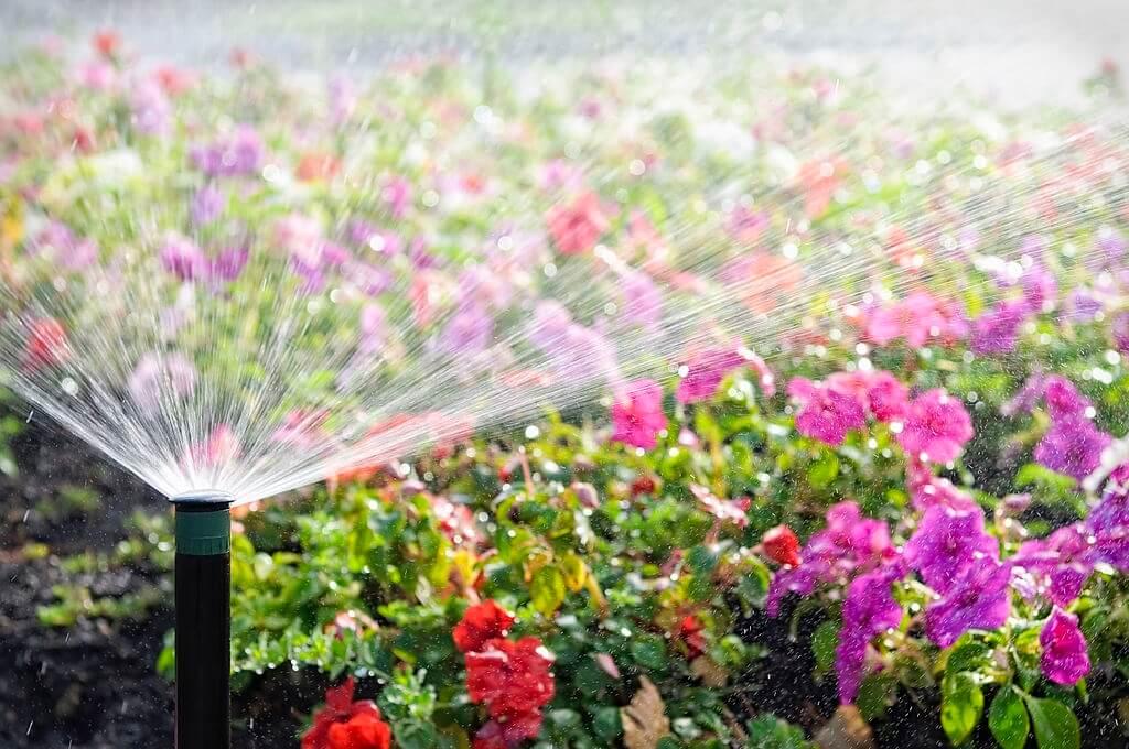 DIY Lawn Irrigation System Cost