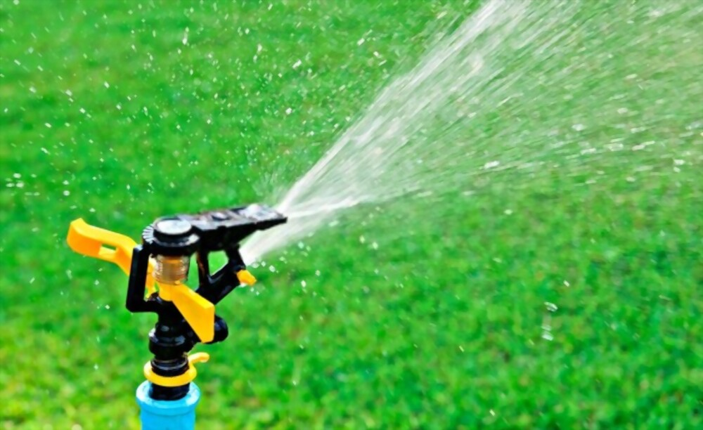 Irrigation Systems Do You Need One
