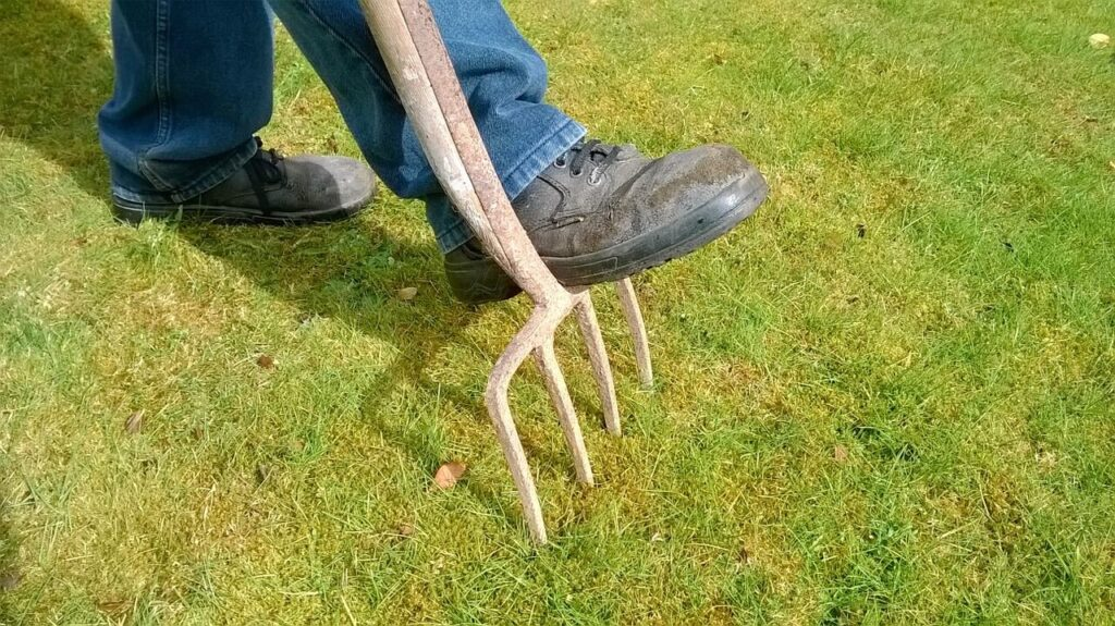 Lawn Aeration Guide
