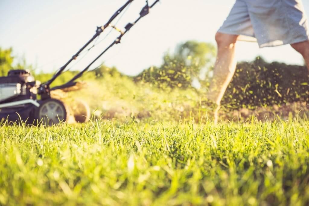 Lawn Mower Starts Then Dies Preventing Mower Problems