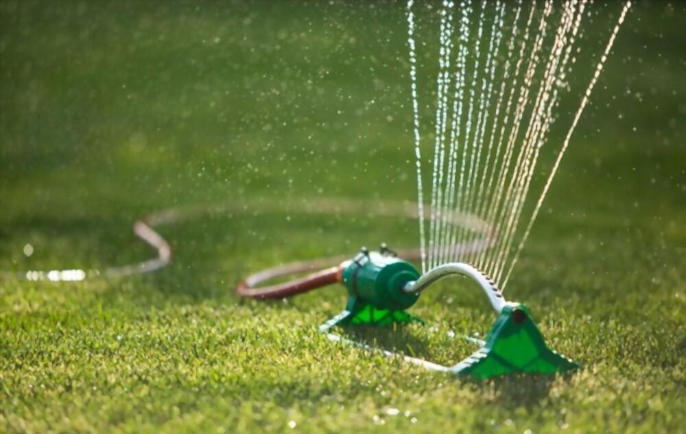 Watering Lawns in Hot & Dry Seasons