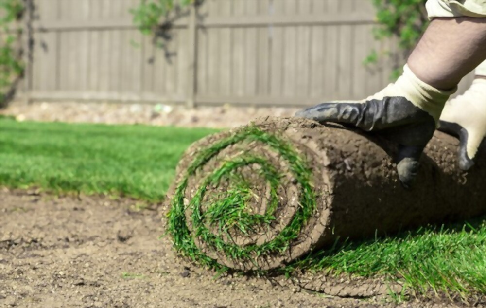 Treating Your Soil Before Laying Sod